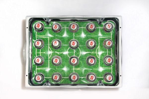 Bierkistenkühler Rasen für Kisten mit 20 Flaschen á 0,5 l